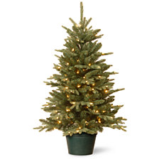 National Tree Company 3' Everyday Collections Small Tree in Green Pot with 100 Clear Lights