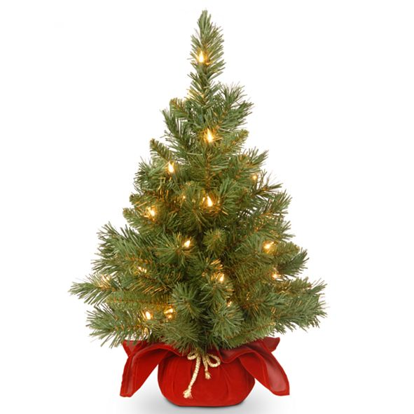 "National Tree Company 24"" Majestic Spruce Tree in Burgundy Cloth Bag with 35 Warm White Battery Operated LED Lights"