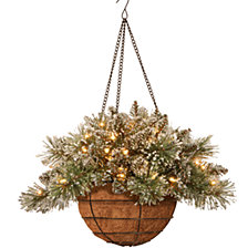 """National Tree Company 20"""" Glittery Bristle Pine Hanging Basket with Pine Cones and 50 Warm White Battery Operated LEDs with Timer"""