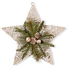 "National Tree 18"" Holiday Star Decoration"