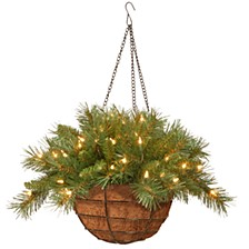 """National Tree 20"""" Tiffany Fir Hanging Basket with Battery Operated Warm White LED Lights"""