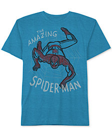 Marvel Little Boys Amazing Spider-Man Graphic T-Shirt