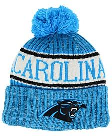 Boys' Carolina Panthers Sport Knit Hat