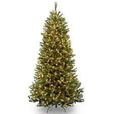 National Tree Rocky Ridge Slim