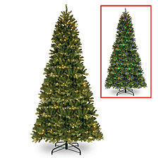 National Tree 9' Feel Real Newberry Spruce Slim Hinged Tree with 550 Dual Color LED Lights Power Connect