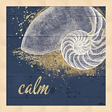 Calm Seas Ix By Janelle Penner Framed Art