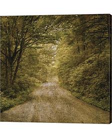 Flannery Fork Road N By John w. Golden Canvas Art