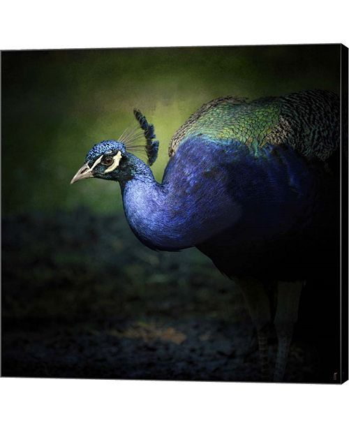 Metaverse Peacock 1 By Jai Johnson Canvas Art