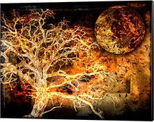 A Raven's World by LightBoxJournal Canvas Art
