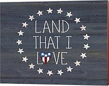Land I Love 2 by Jo Moulton Canvas Art