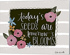 Today's Seeds by Katie Doucette Canvas Art