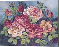 Victorian Roses By Barbara Mock Canvas Art