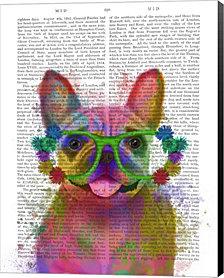Rainbow Splash French Bulldog, Portrait By Fab Funky Canvas Art