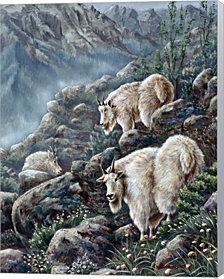 Mountain Voyager by Wanda Mumm Canvas Art