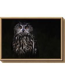 Amanti Art Prince of the Night by Martine Benezech Canvas Framed Art