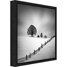 Amanti Art Solitary Tree 6 by Martin Rak Canvas Framed Art