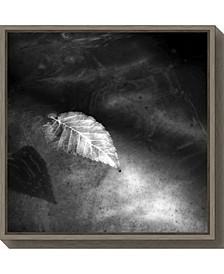 Floating Away 2 Leaf by Matt Marten Canvas Framed Art