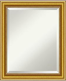 Amanti Art Townhouse 20x24 Bathroom Mirror