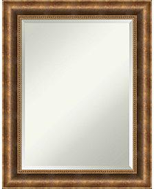 Amanti Art Intaglio Antique 21x25 Wall Mirror