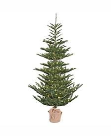 "5"" Alberta Spruce Artificial Christmas Tree"