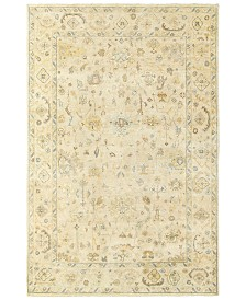 Tommy Bahama Home Palace 10301 Beige/Gray 10' x 14' Area Rug