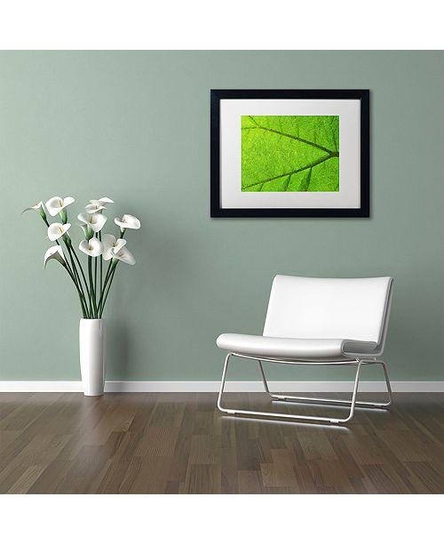 "Trademark Global Cora Niele 'Leaf Texture IV' Matted Framed Art, 16"" x 20"""