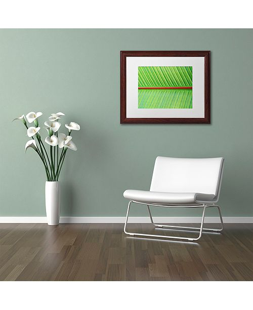 "Trademark Global Cora Niele 'Leaf Texture V' Matted Framed Art, 11"" x 14"""