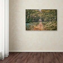 Cora Niele 'Autumn Walk' Canvas Art