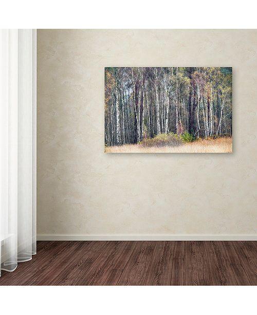 "Trademark Global Cora Niele 'Birches' Canvas Art, 16"" x 24"""