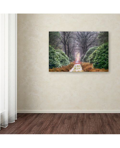 "Trademark Global Cora Niele 'Rhododendron Lane' Canvas Art, 12"" x 19"""