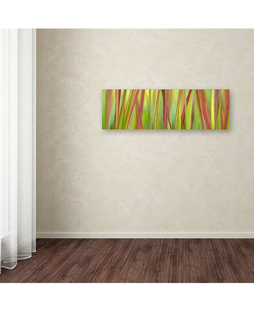 """Trademark Global Cora Niele 'Green & Red Grass Scape' Canvas Art, 6"""" x 19"""""""