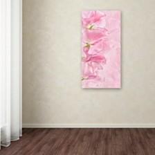 "Cora Niele 'Pink Sweet Peas' Canvas Art, 10"" x 19"""