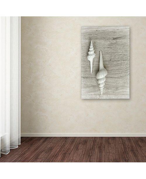 "Trademark Global Cora Niele 'Two White Shells' Canvas Art, 12"" x 19"""