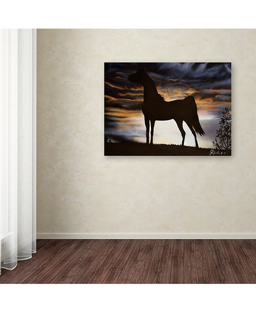"Trademark Global Jenny Newland 'Majestic Beauty' Canvas Art, 14"" x 19"""
