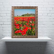 Michael Blanchette Photography 'Palazzo Massaini' Ornate Framed Art