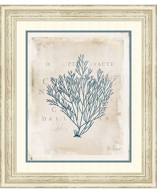 Sea Garden II 24x28 Framed Art Print