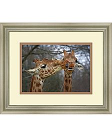 Amanti Art Happy Valentine  Framed Art Print