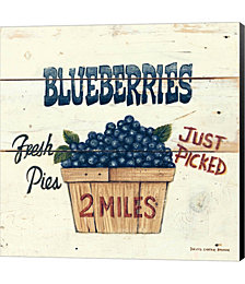 Blueberries Just Picked by David Carter Brown Canvas Art