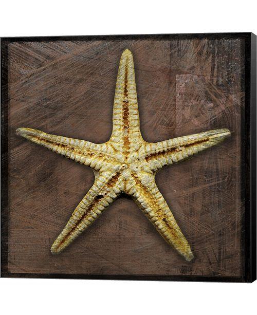 Metaverse Starfish by John W. Golden Canvas Art