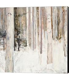 Warm Winter Light II by Julia Purinton Canvas Art