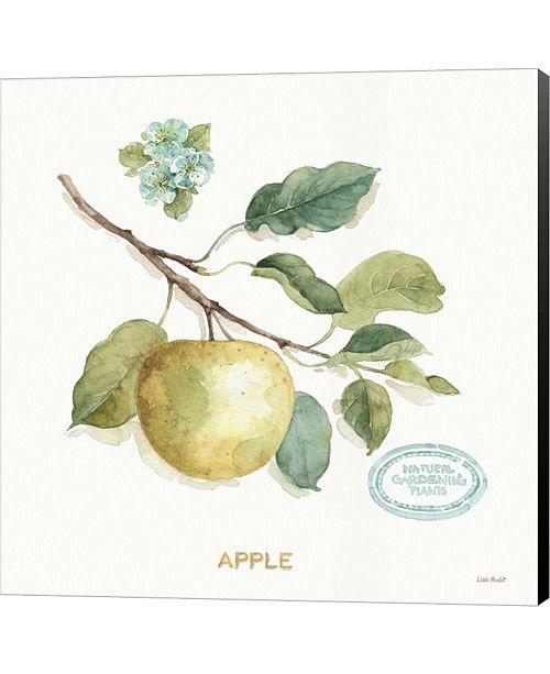 Metaverse My Greenhouse Fruit IV by Lisa Audit Canvas Art