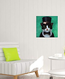 "iCanvas ""Tuxedo Cat"" by Lucia Heffernan Gallery-Wrapped Canvas Print (18 x 18 x 0.75)"