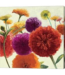 Pure Palette Zinnias by Shirley Novak Canvas Art