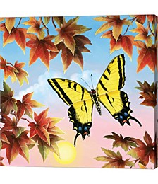 Swallowtail by Rosiland Solomon Canvas Art