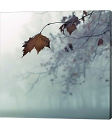 November by Nicholas Bell Photography Canvas Art
