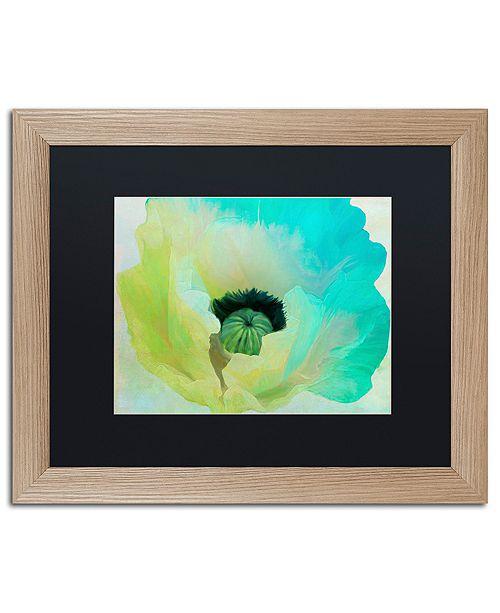"""Trademark Global Color Bakery 'Poppy Gradient I' Matted Framed Art, 16"""" x 20"""""""