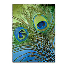 Color Bakery 'Peacock Candy I' Canvas Art