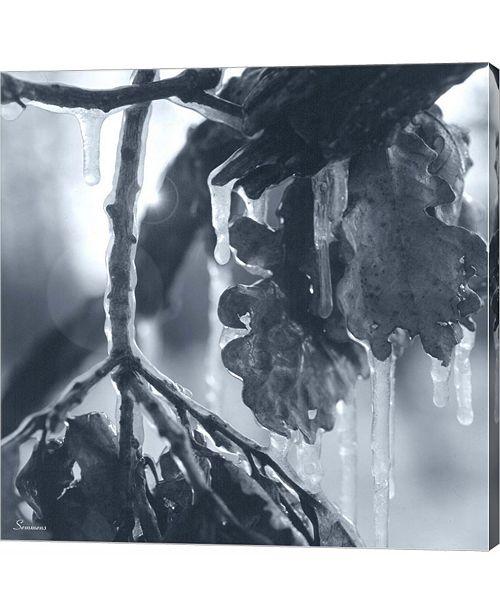 Metaverse Ice Branch 3 by Gordon Semmens