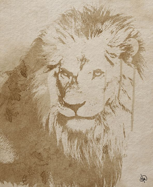 "Creative Gallery Watercolor Lion 24"" X 36"" Canvas Wall Art Print"