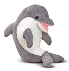 Skimmer Dolphin